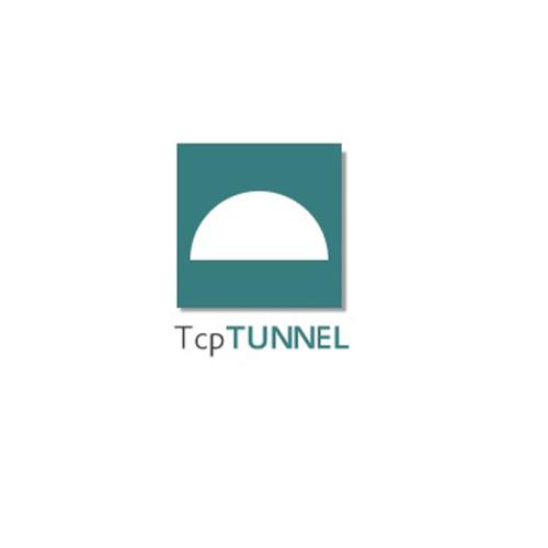 logo-tcp-tunnel-cadware-engineering